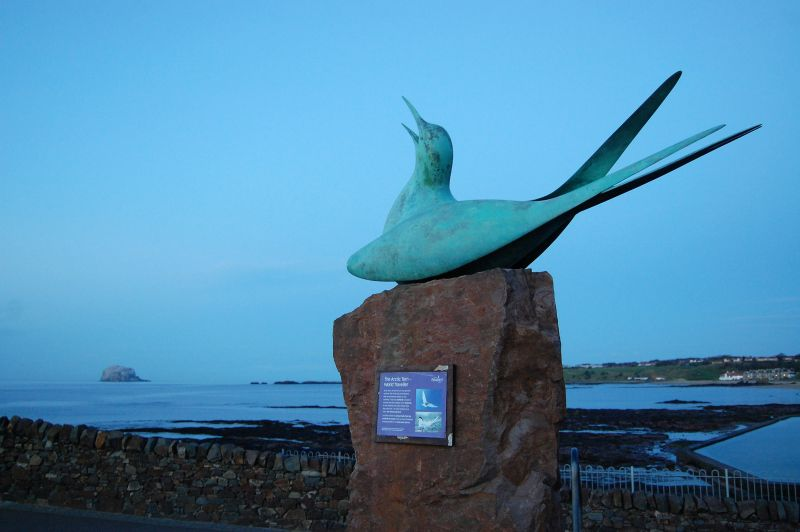 sculpture of bird at North Berwick Seabird Centre